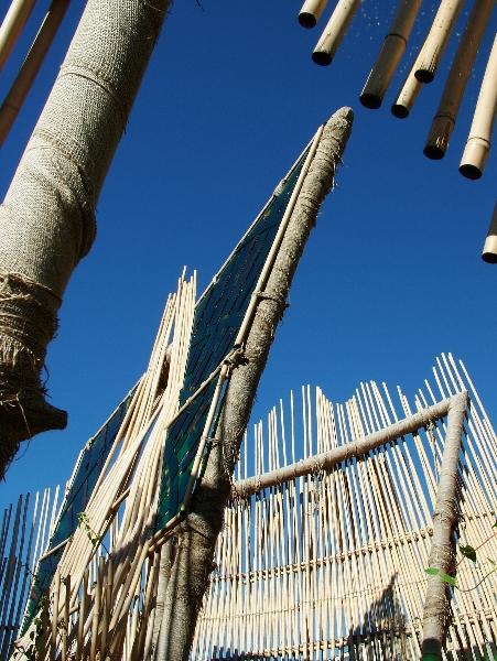 La Cathédrale de Bambou